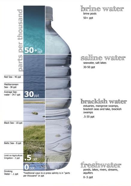 شوری و یا Salinity چیست؟