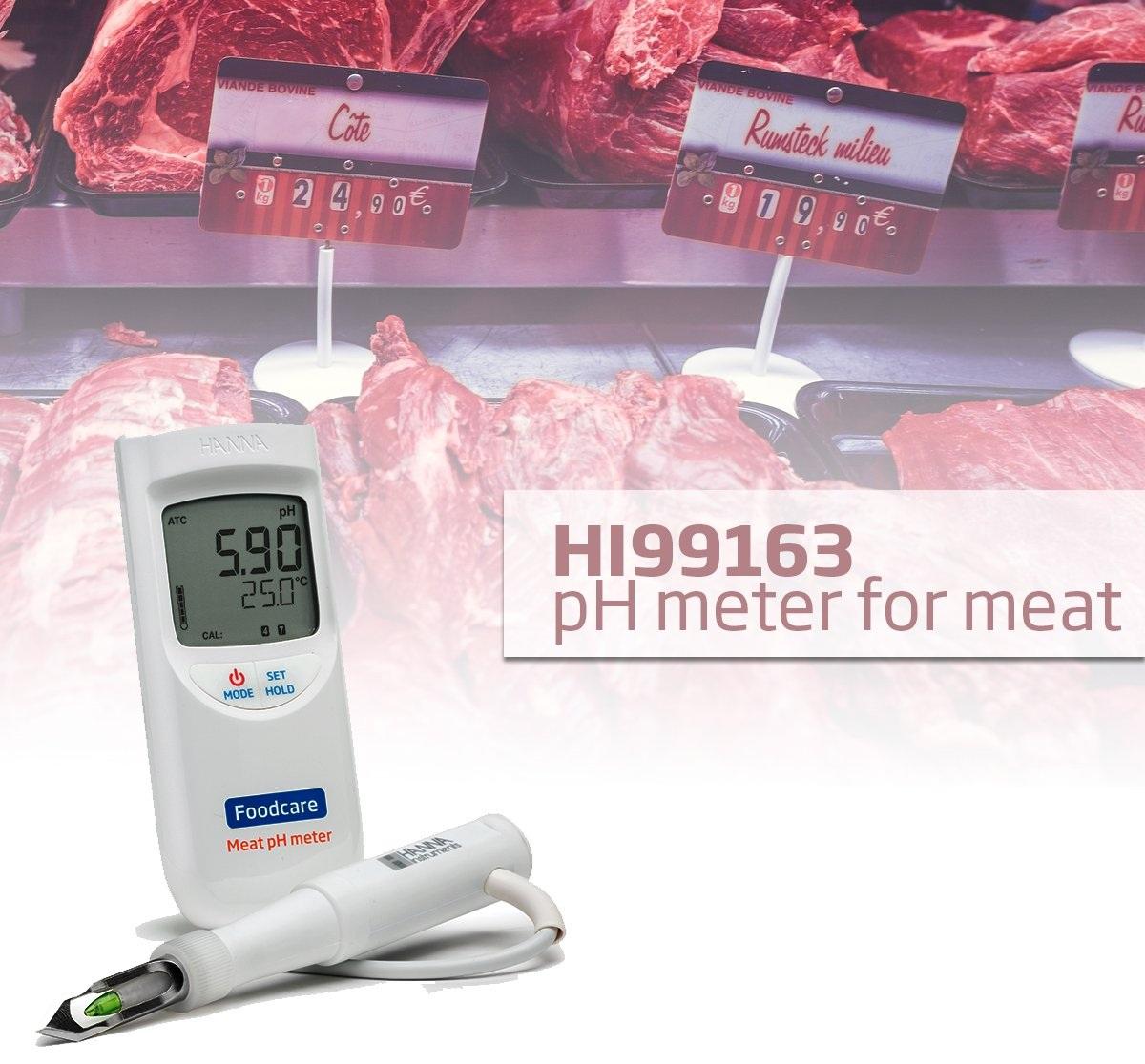 PH متر گوشت پرتابل و قابل حمل HI99163 | pH متر پرتابل گوشت HI99163